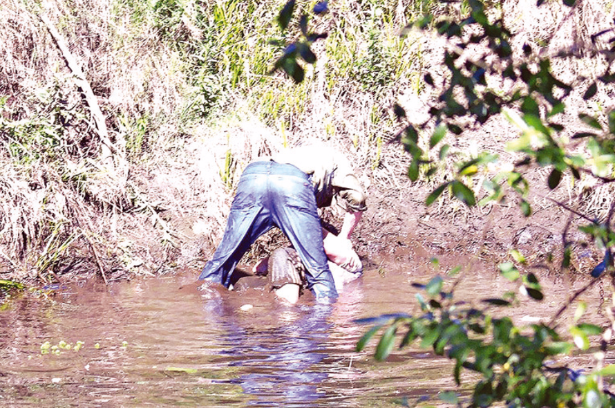 Homem que tentou afogar esposa no rio Águeda continua em fuga